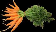 federal-carrots-1083235_960_720