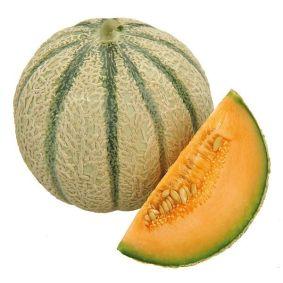 melon-f1-melgic