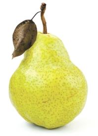 pear-single_rgb
